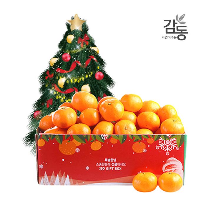 [티몬121212] 게릴라타임 크리스마스에디션 고당도 햇 감귤 5kg 로열/소과