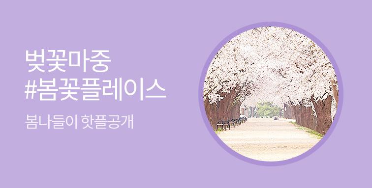 벚꽃마중 봄꽃플레이스