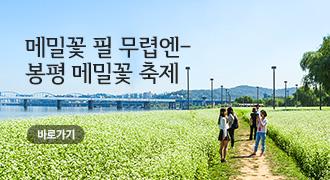 봉평메밀꽃축제