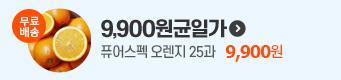 9900원균일가
